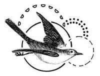 Doodledbird
