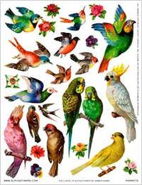 Birdsheet_2