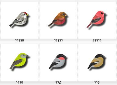 Birdsjapanese